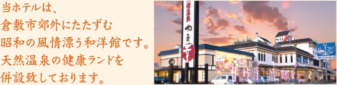 当ホテルは、倉敷市郊外にたたずむ昭和の風情漂う和洋館です。 天然温泉の健康ランドを併設致しております。